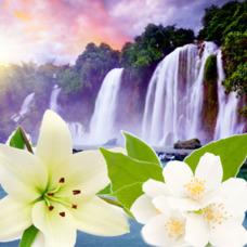 "Отдушка ""Водопад Таити"""
