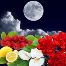 """Отдушка """"Лунное затмение"""""""